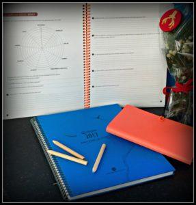 Alt_Coaching Agenda Aligae valoración año