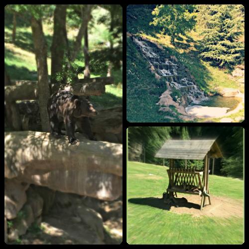Alt_imagenes de diferentes espacios en Mollo Parc