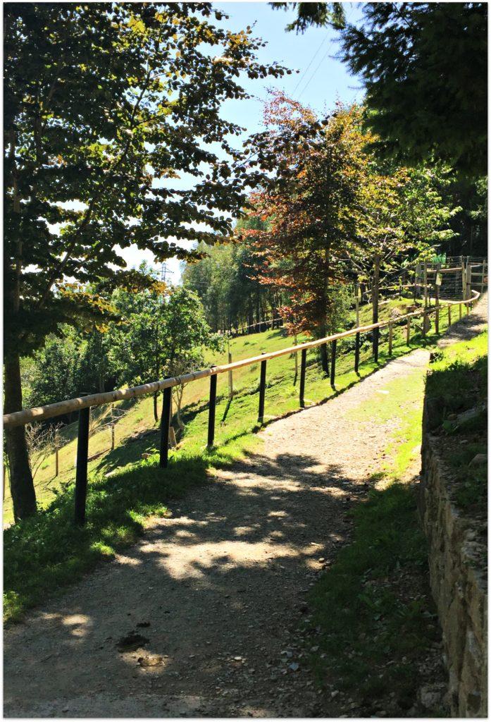 Alt_Rutas y senderos en Molló Parc