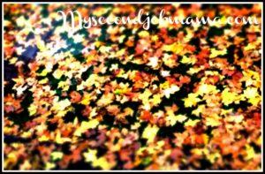 Alt_imagen otoñal para ilustrar un blog creativo