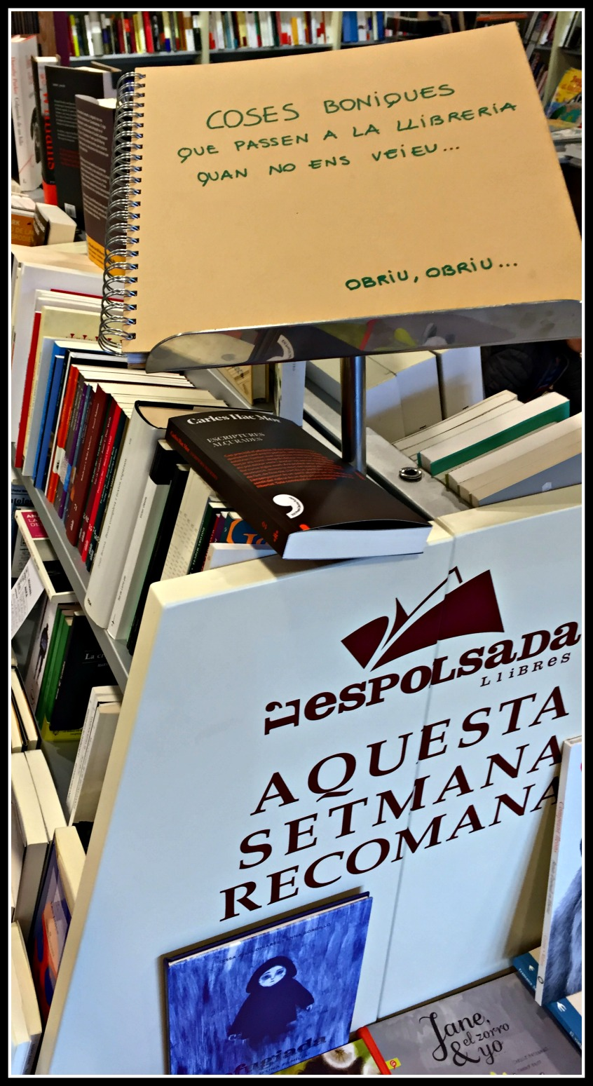 Alt_imagen interior libreria L'Espolsada