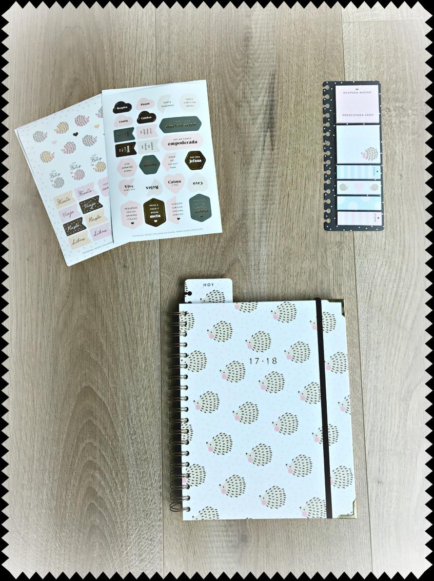 Alt_imagen de mi agenda personal Charuca y set de pegatinas y notas
