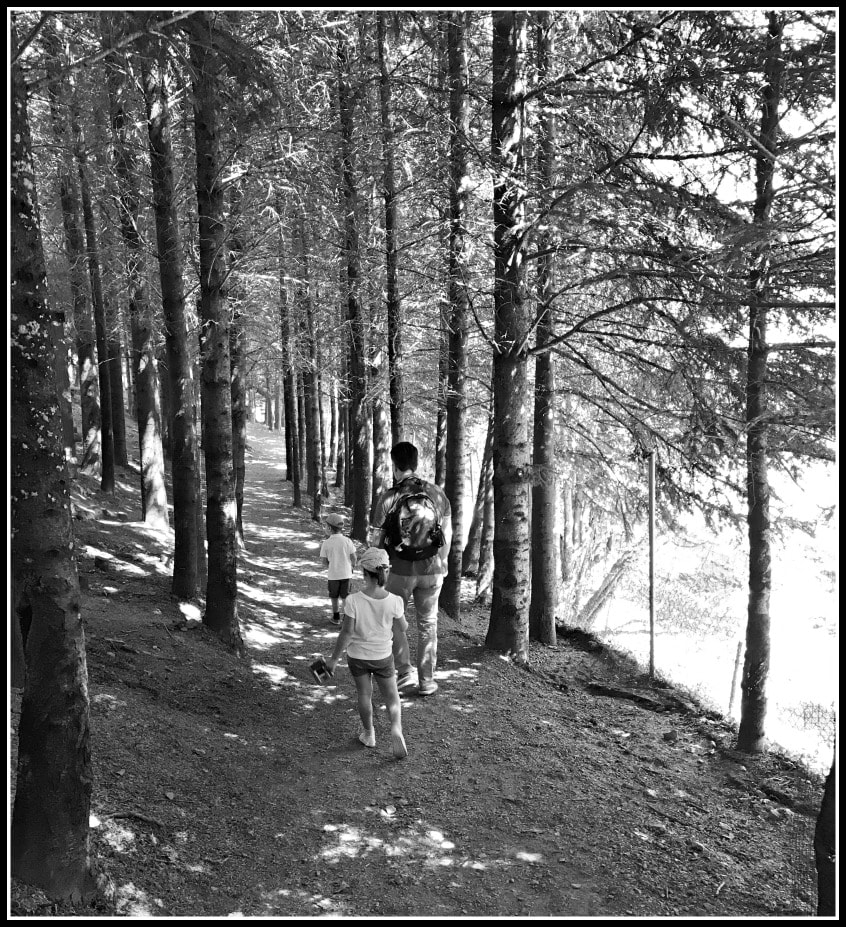 Alt_imagen sendero Molló Parc